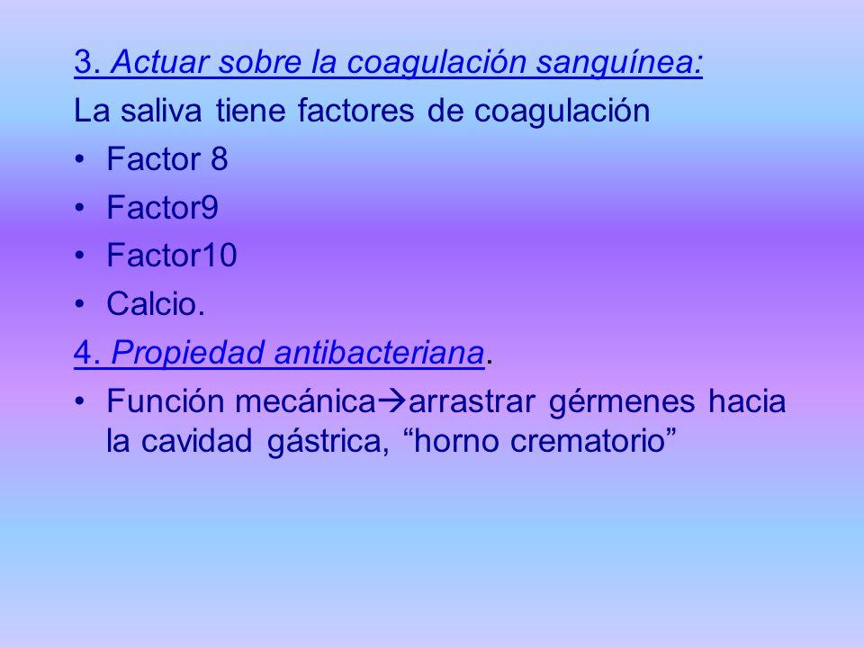 3. Actuar sobre la coagulación sanguínea: La saliva tiene factores de coagulación Factor 8 Factor9 Factor10 Calcio. 4. Propiedad antibacteriana. Funci