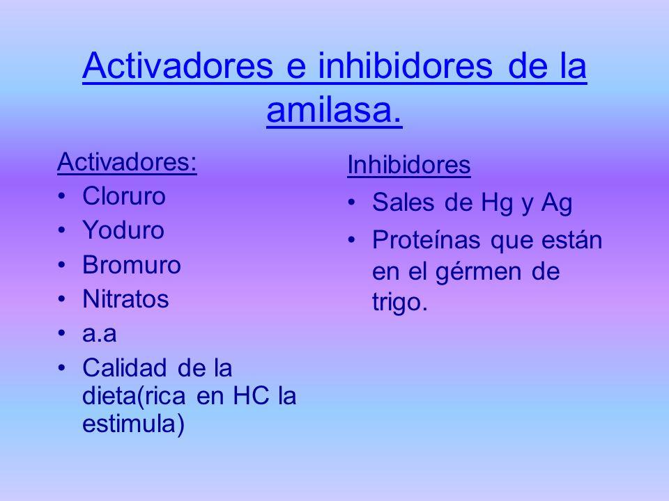 Activadores e inhibidores de la amilasa. Activadores: Cloruro Yoduro Bromuro Nitratos a.a Calidad de la dieta(rica en HC la estimula) Inhibidores Sale