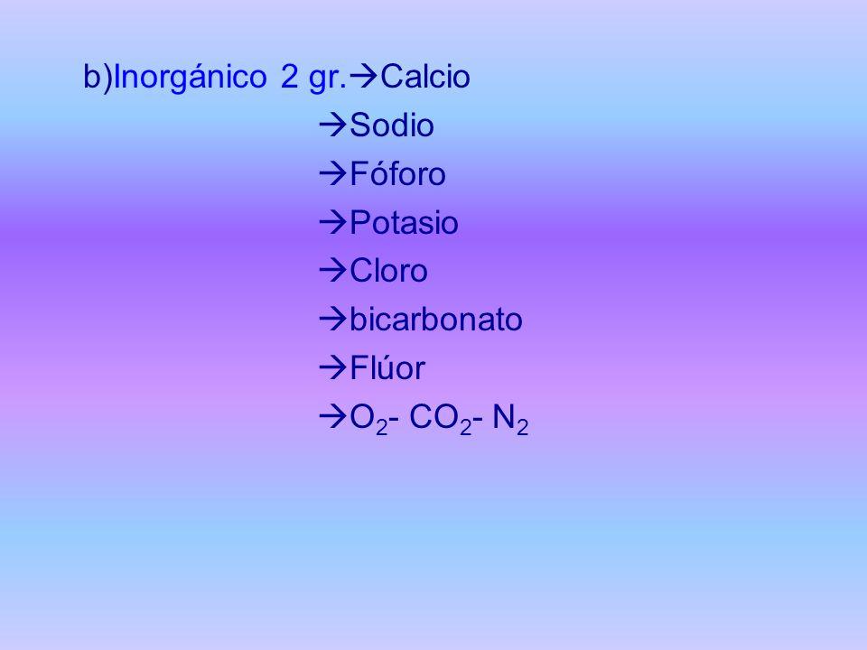 b)Inorgánico 2 gr. Calcio Sodio Fóforo Potasio Cloro bicarbonato Flúor O 2 - CO 2 - N 2
