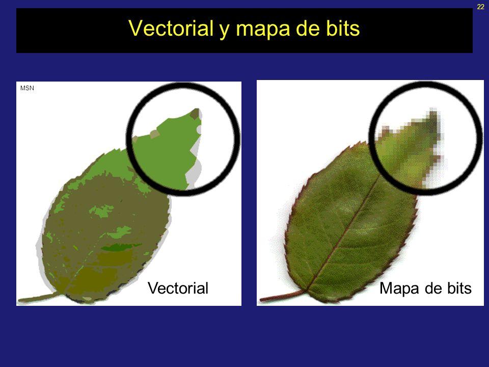 22 Vectorial y mapa de bits VectorialMapa de bits MSN