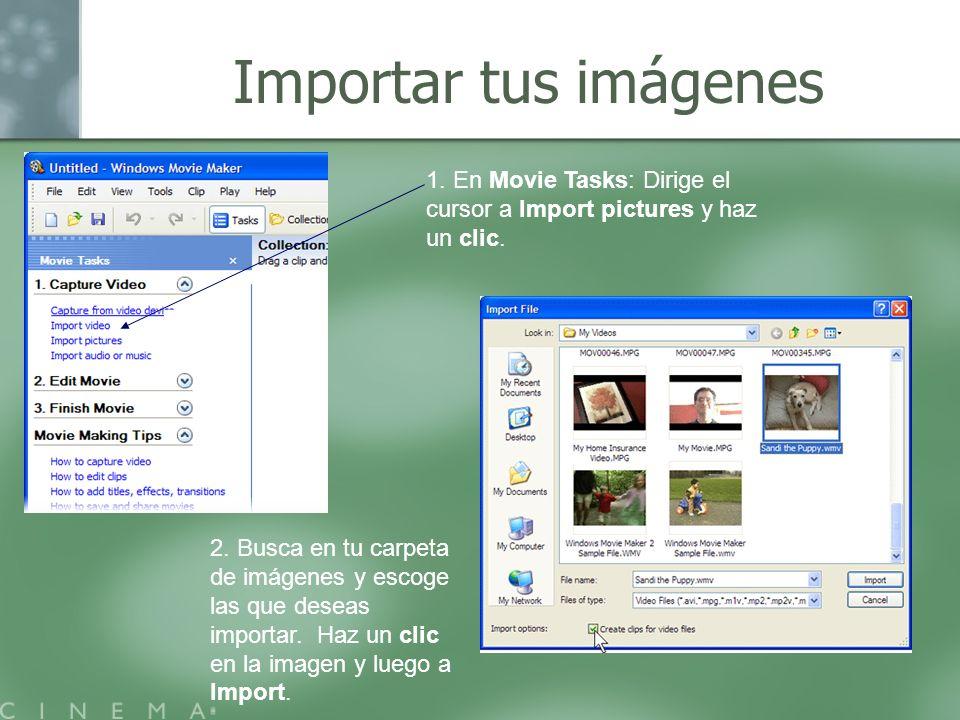 Importar tus imágenes 1. En Movie Tasks: Dirige el cursor a Import pictures y haz un clic. 2. Busca en tu carpeta de imágenes y escoge las que deseas