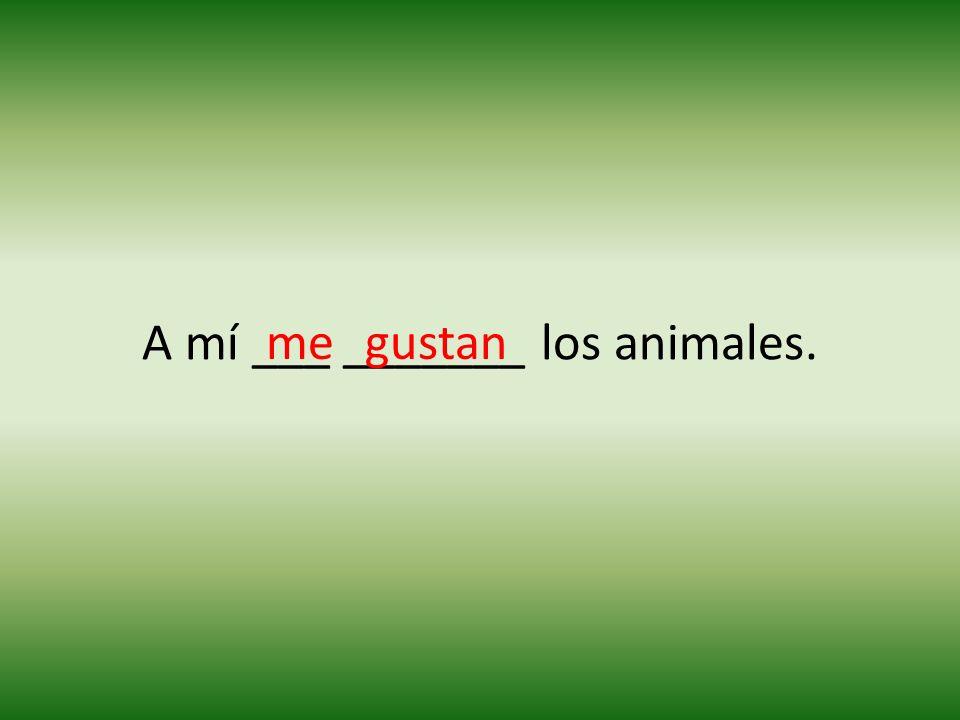 A mí ___ _______ los animales. megustan