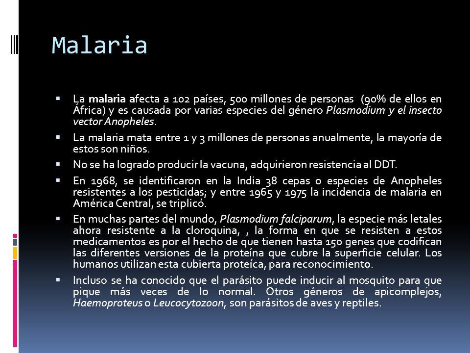 Malaria La malaria afecta a 102 países, 500 millones de personas (90% de ellos en África) y es causada por varias especies del género Plasmodium y el insecto vector Anopheles.
