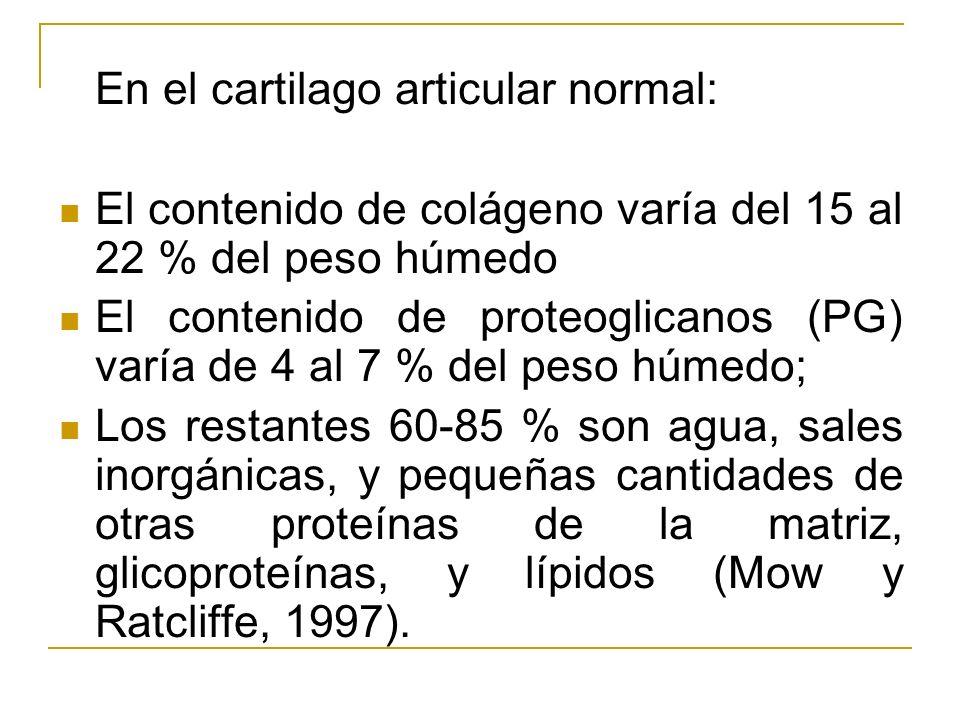 En el cartilago articular normal: El contenido de colágeno varía del 15 al 22 % del peso húmedo El contenido de proteoglicanos (PG) varía de 4 al 7 %