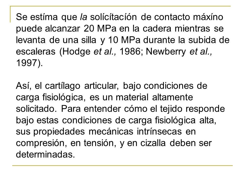 Se estíma que la solícítacíón de contacto máxíno puede alcanzar 20 MPa en la cadera mientras se levanta de una silla y 10 MPa durante la subida de esc