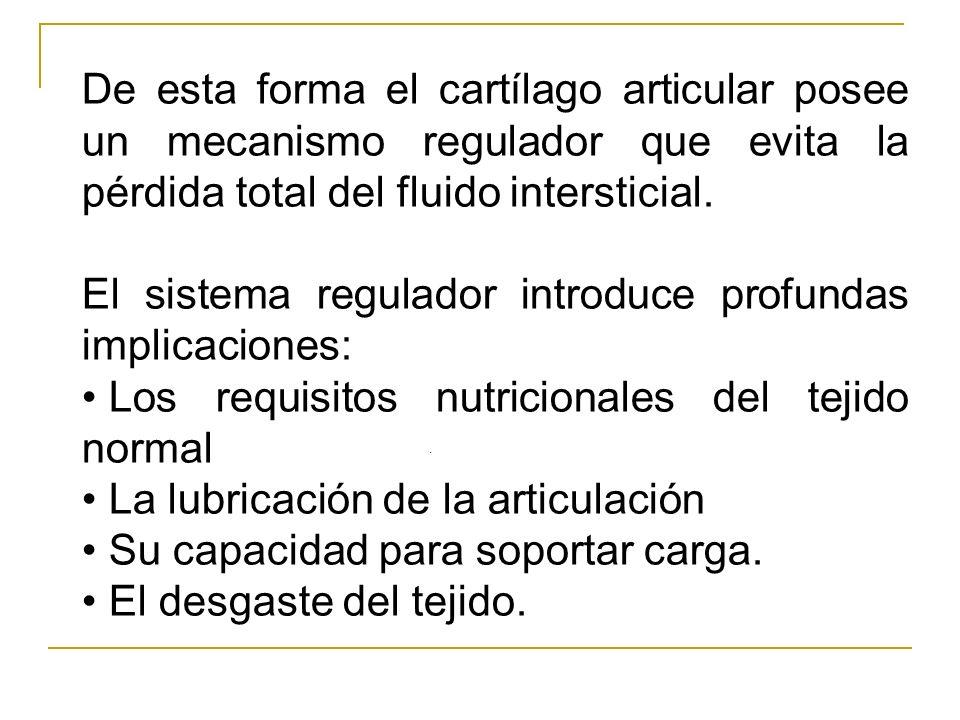 De esta forma el cartílago articular posee un mecanismo regulador que evita la pérdida total del fluido intersticial. El sistema regulador introduce p