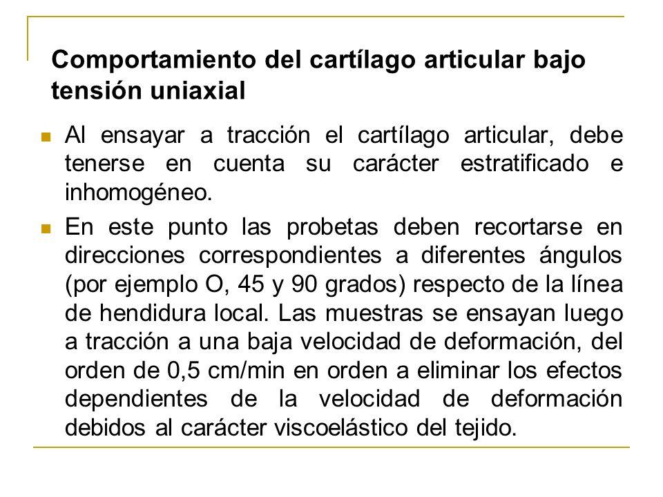 Al ensayar a tracción el cartílago articular, debe tenerse en cuenta su carácter estratificado e inhomogéneo. En este punto las probetas deben recorta