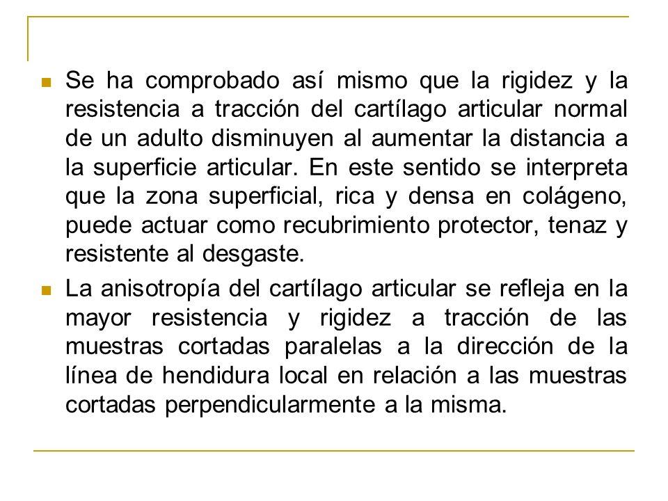 Se ha comprobado así mismo que la rigidez y la resistencia a tracción del cartílago articular normal de un adulto disminuyen al aumentar la distancia