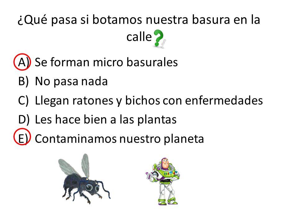 ¿Qué pasa si botamos nuestra basura en la calle A)Se forman micro basurales B)No pasa nada C)Llegan ratones y bichos con enfermedades D)Les hace bien a las plantas E)Contaminamos nuestro planeta