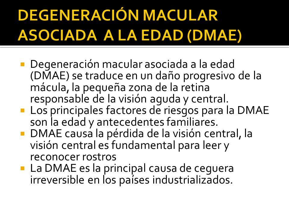 Degeneración macular asociada a la edad (DMAE) se traduce en un daño progresivo de la mácula, la pequeña zona de la retina responsable de la visión ag