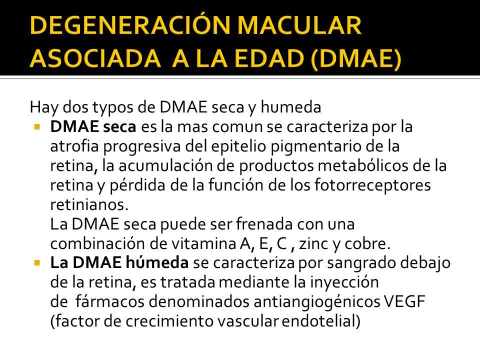 Hay dos typos de DMAE seca y humeda DMAE seca es la mas comun se caracteriza por la atrofia progresiva del epitelio pigmentario de la retina, la acumu