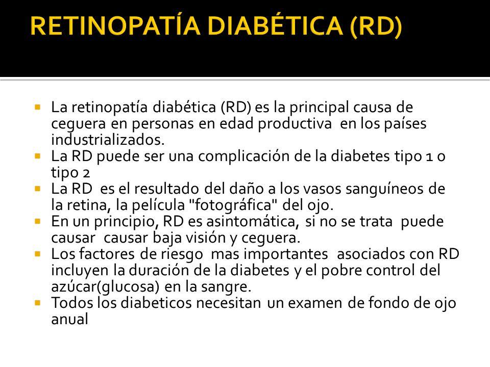 La retinopatía diabética (RD) es la principal causa de ceguera en personas en edad productiva en los países industrializados. La RD puede ser una comp