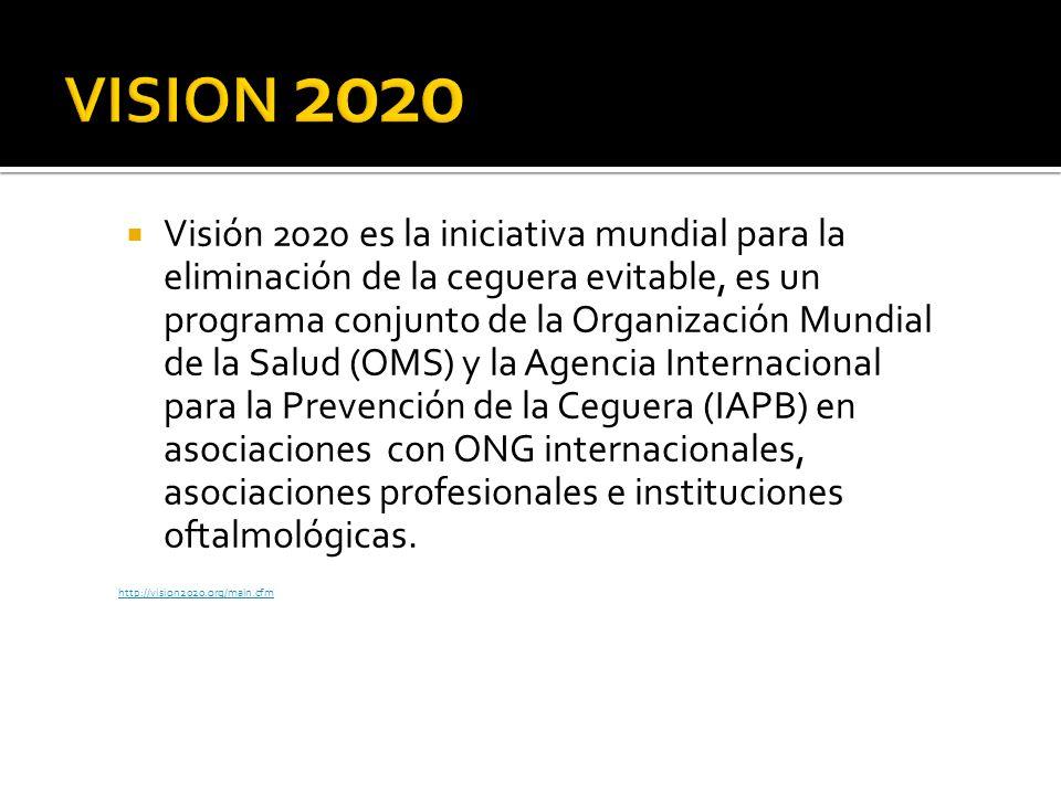 Visión 2020 es la iniciativa mundial para la eliminación de la ceguera evitable, es un programa conjunto de la Organización Mundial de la Salud (OMS)