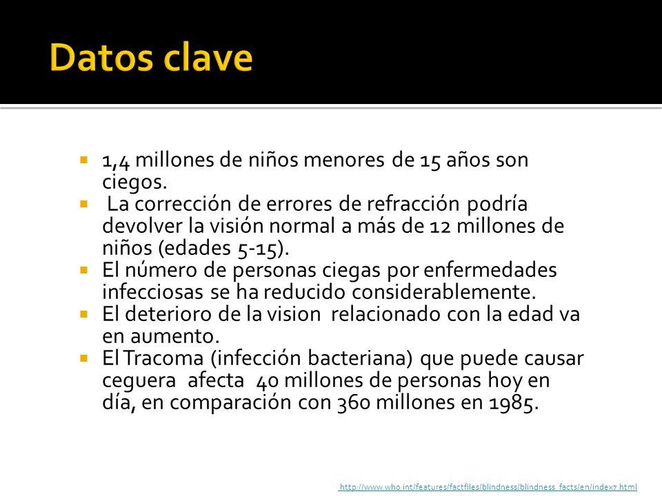 1,4 millones de niños menores de 15 años son ciegos. La corrección de errores de refracción podría devolver la visión normal a más de 12 millones de n