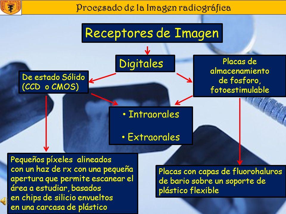 Procesado de la Imagen radiográfica Procesado de la Imagen Errores del Revelado