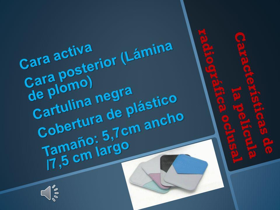 Características de la película radiográfica oclusal Cara activa Cara posterior (Lámina de plomo) Cartulina negra Cobertura de plástico Tamaño: 5,7cm ancho /7,5 cm largo