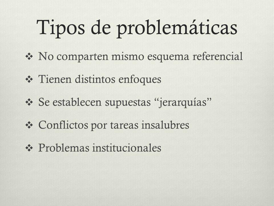 Tipos de problemáticas No comparten mismo esquema referencial Tienen distintos enfoques Se establecen supuestas jerarquías Conflictos por tareas insal