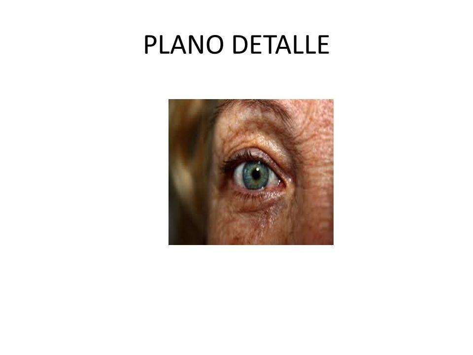 PLANO DETALLE