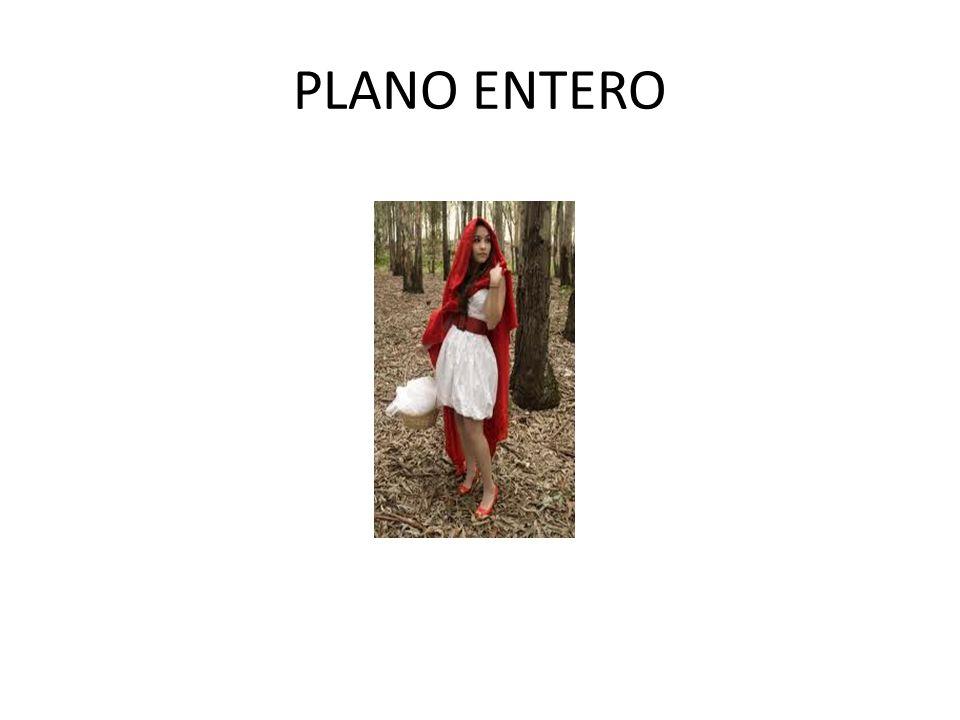 PLANO ENTERO