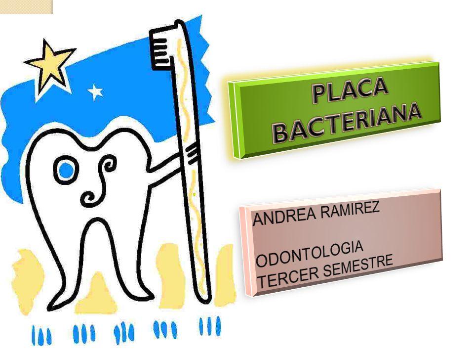 La presencia del ion fluoruro potencia la precipitación en la estructura del diente a la fluorapatita a partir de los iones de calcio y fosfato presentes en la saliva este reemplaza las sales solubles que contienen manganeso y carbonato que se habían perdido por consecuencia de la desmineralización inducida por bacterias