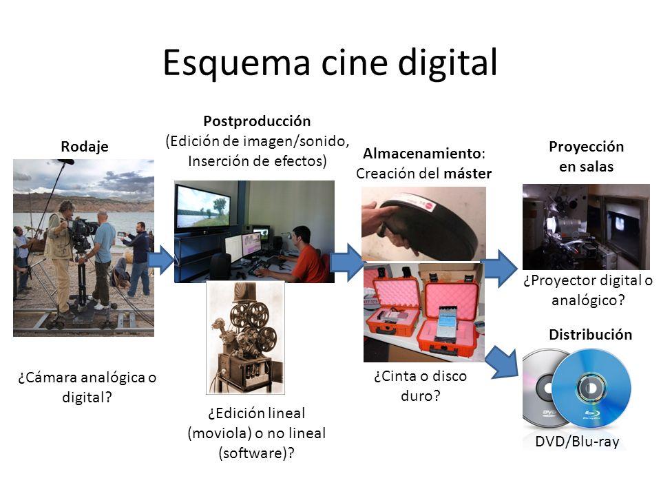 Distinción lingüística Film Movies Película