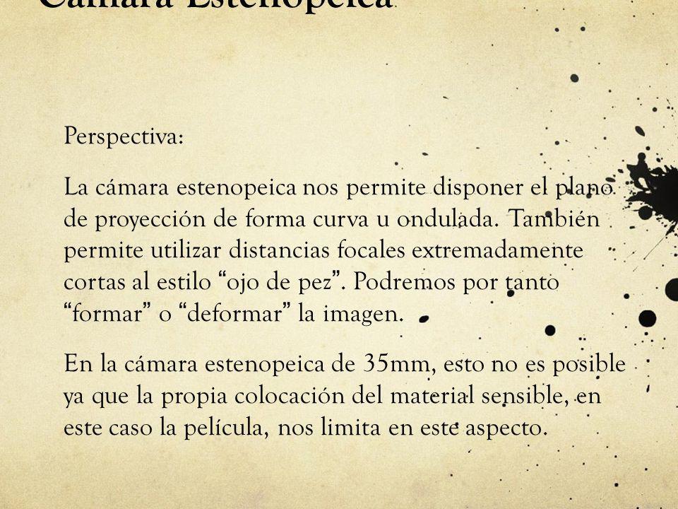 Cámara Estenopeica Perspectiva: La cámara estenopeica nos permite disponer el plano de proyección de forma curva u ondulada. También permite utilizar