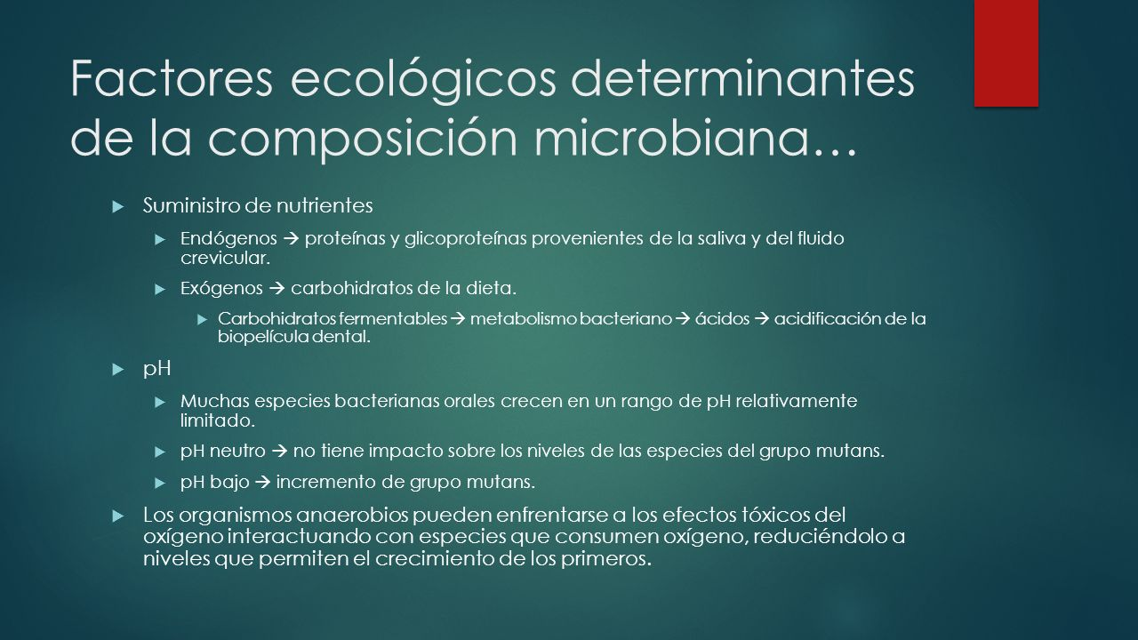 Factores ecológicos determinantes de la composición microbiana… Suministro de nutrientes Endógenos proteínas y glicoproteínas provenientes de la saliva y del fluido crevicular.