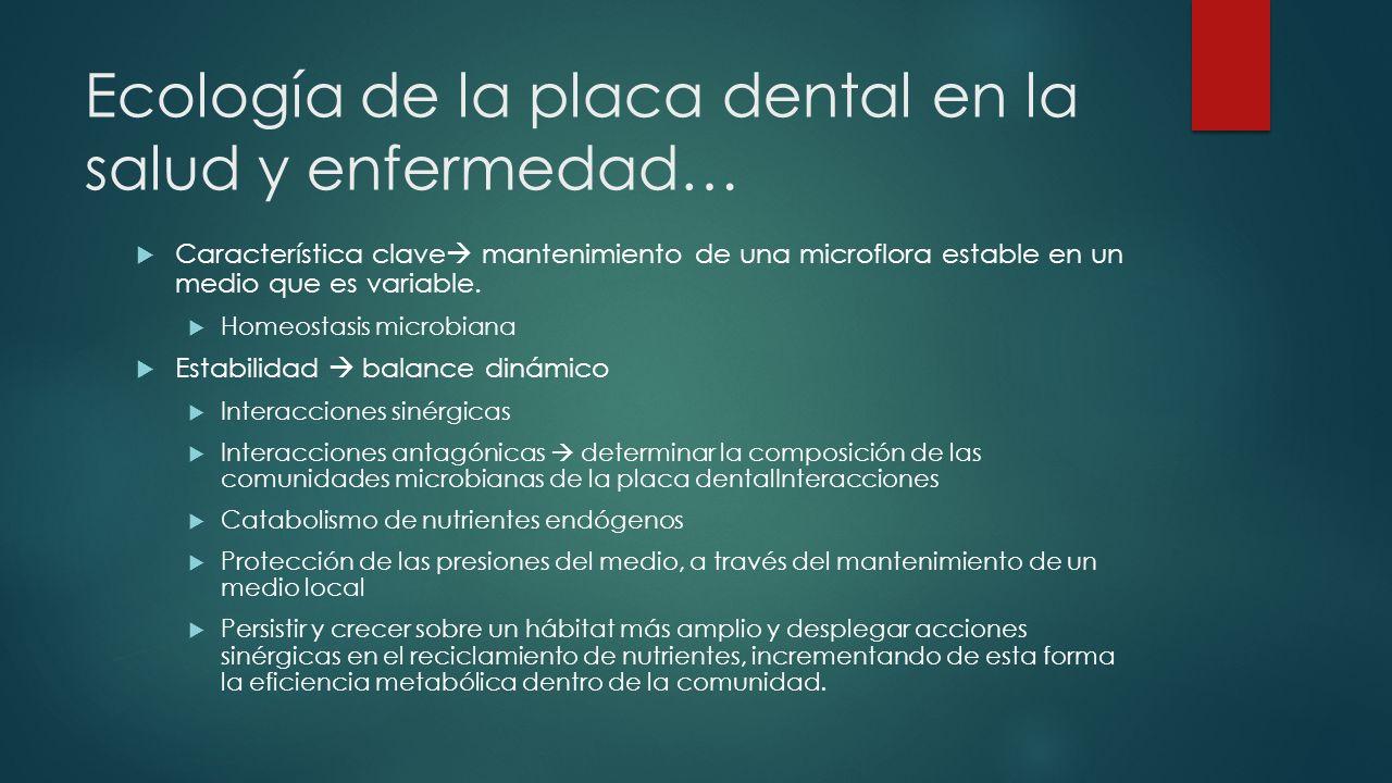 Ecología de la placa dental en la salud y enfermedad… Característica clave mantenimiento de una microflora estable en un medio que es variable. Homeos