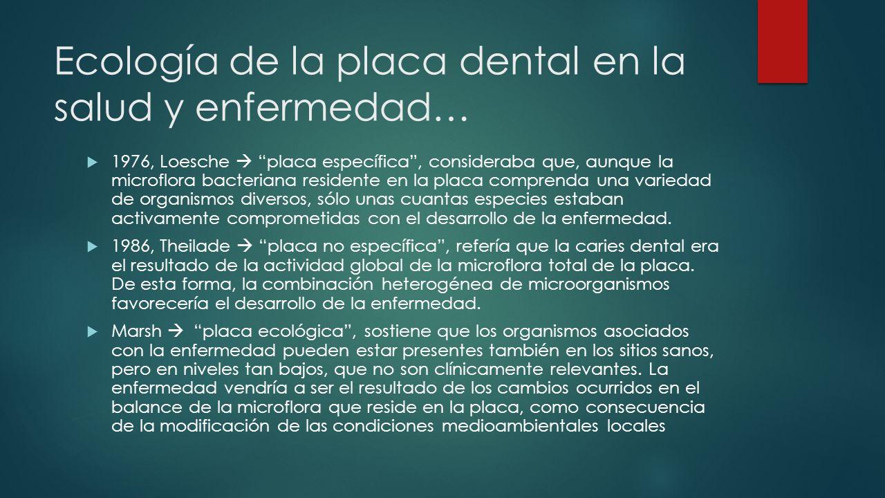 Ecología de la placa dental en la salud y enfermedad… 1976, Loesche placa específica, consideraba que, aunque la microflora bacteriana residente en la