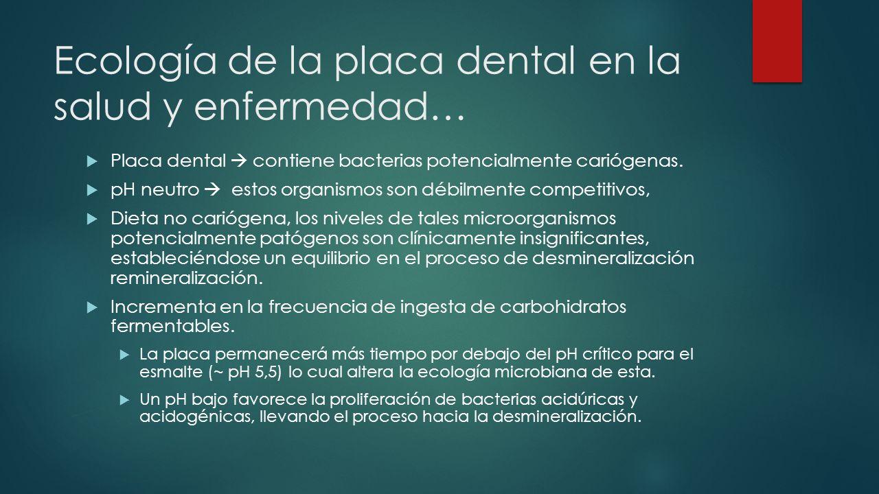Ecología de la placa dental en la salud y enfermedad… Placa dental contiene bacterias potencialmente cariógenas. pH neutro estos organismos son débilm
