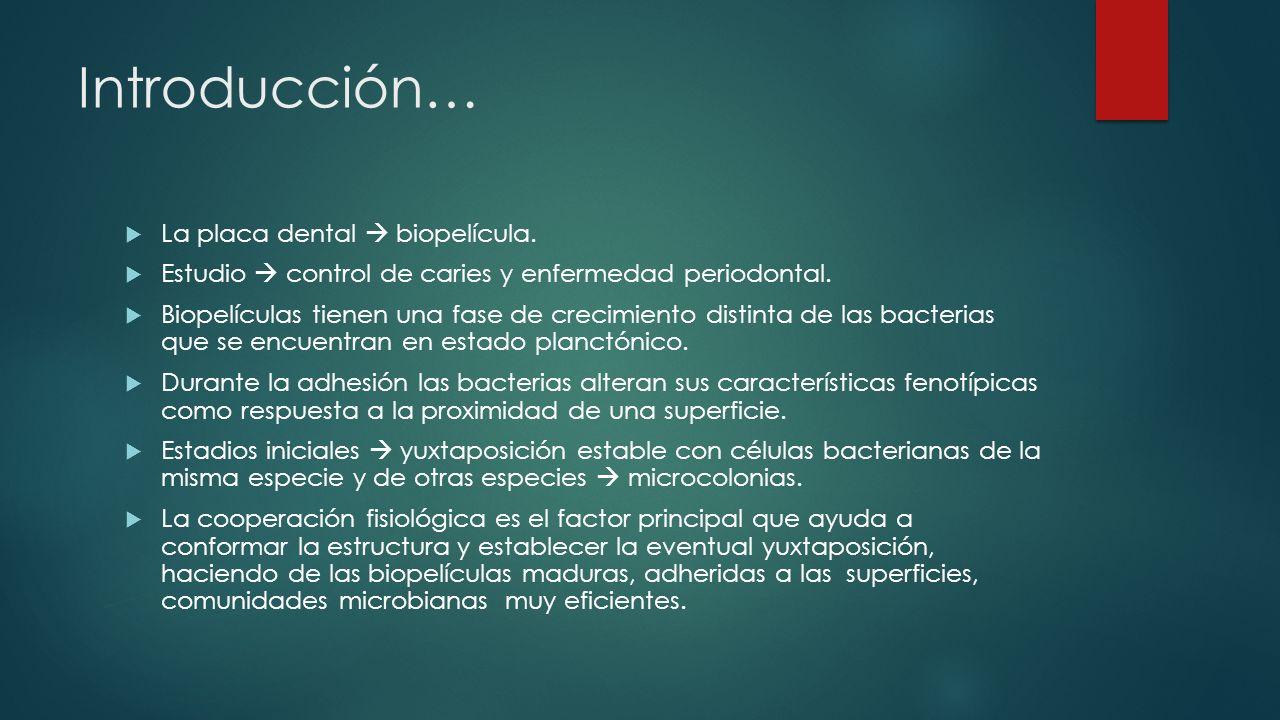 Introducción… La placa dental biopelícula. Estudio control de caries y enfermedad periodontal. Biopelículas tienen una fase de crecimiento distinta de