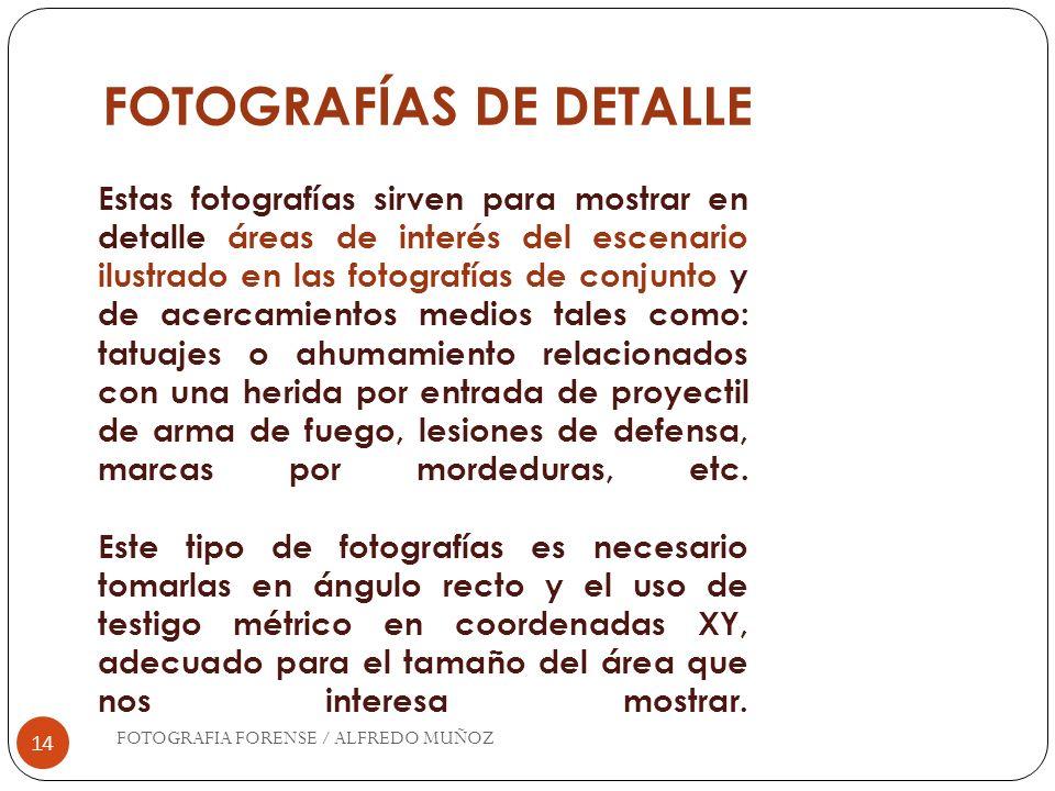 14 FOTOGRAFÍAS DE DETALLE Estas fotografías sirven para mostrar en detalle áreas de interés del escenario ilustrado en las fotografías de conjunto y d