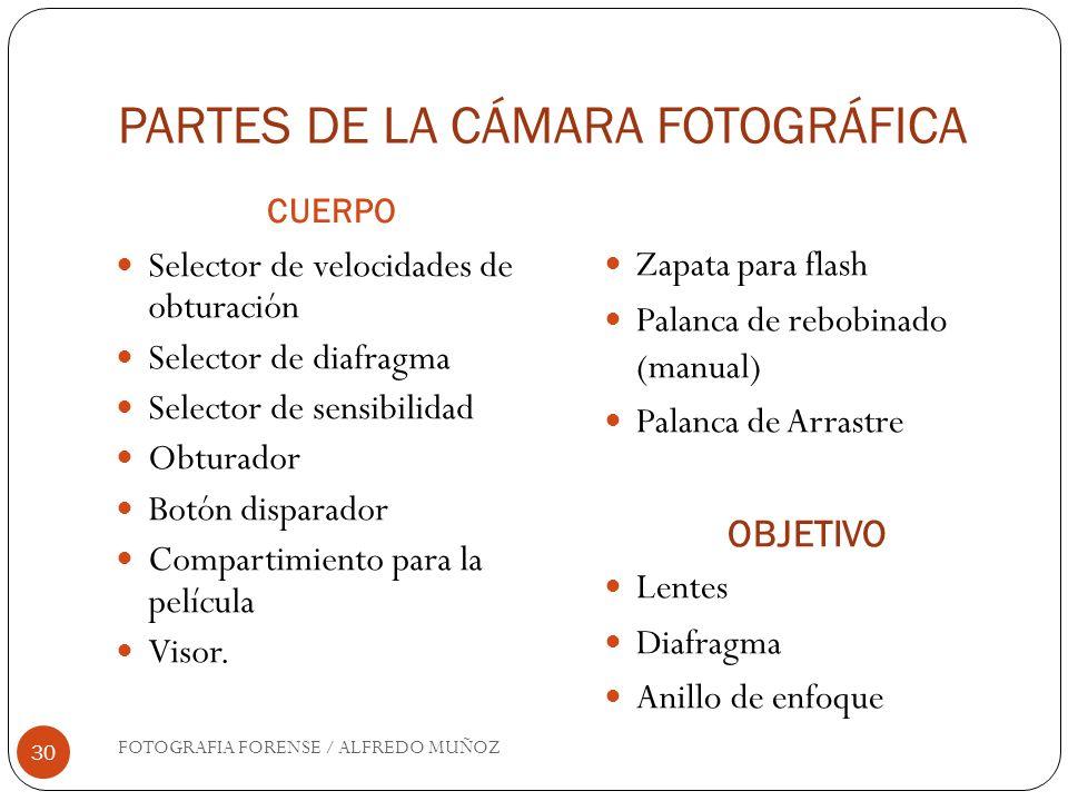 PARTES DE LA CÁMARA FOTOGRÁFICA CUERPO FOTOGRAFIA FORENSE / ALFREDO MUÑOZ 30 Selector de velocidades de obturación Selector de diafragma Selector de s