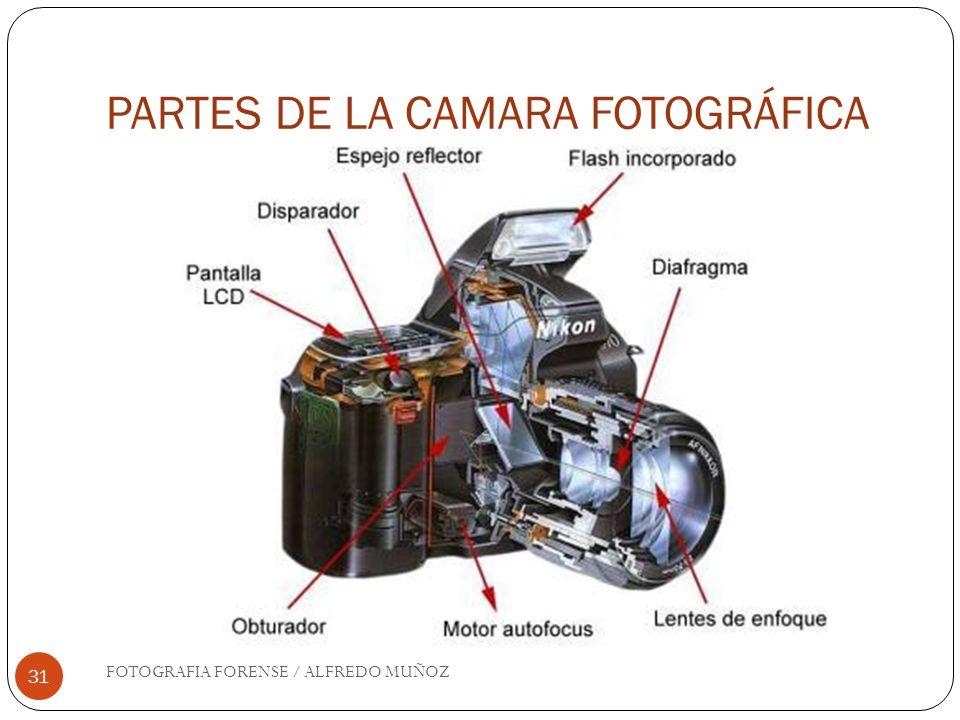 PARTES DE LA CAMARA FOTOGRÁFICA FOTOGRAFIA FORENSE / ALFREDO MUÑOZ 31