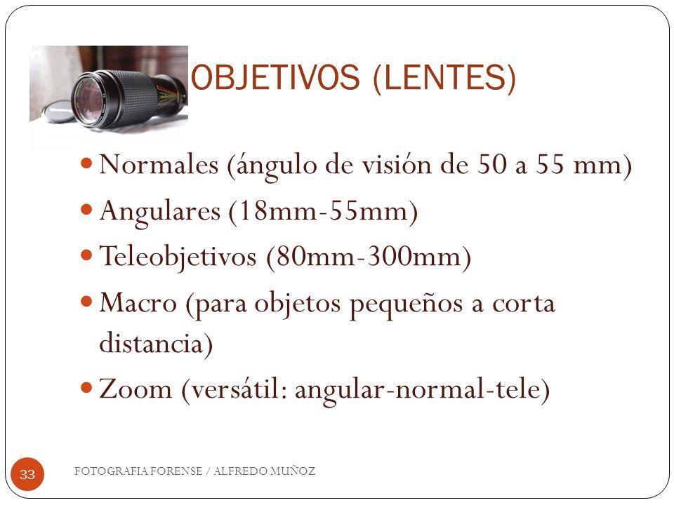 OBJETIVOS (LENTES) FOTOGRAFIA FORENSE / ALFREDO MUÑOZ 33 Normales (ángulo de visión de 50 a 55 mm) Angulares (18mm-55mm) Teleobjetivos (80mm-300mm) Ma