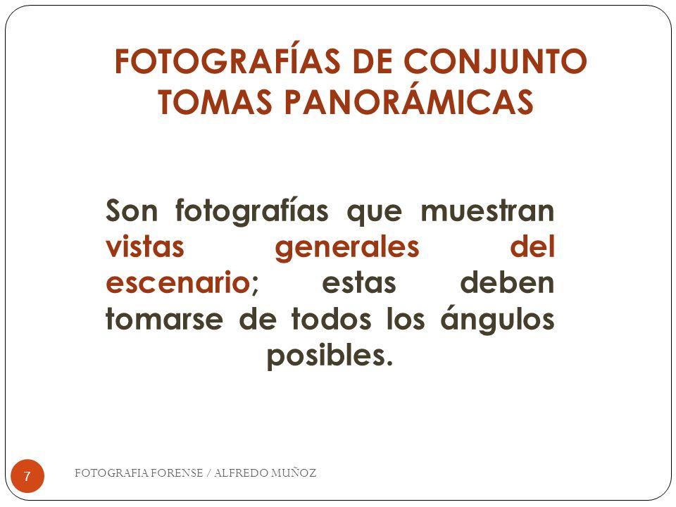 7 FOTOGRAFÍAS DE CONJUNTO TOMAS PANORÁMICAS Son fotografías que muestran vistas generales del escenario; estas deben tomarse de todos los ángulos posi