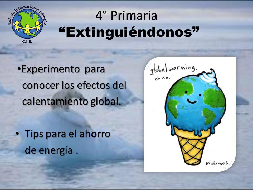 3° Primaria ¿Qué hay en tu pescado? Visita al Centro de Capacitación Ambiental. Visita al Centro de Capacitación Ambiental. Campaña de reciclado de pl