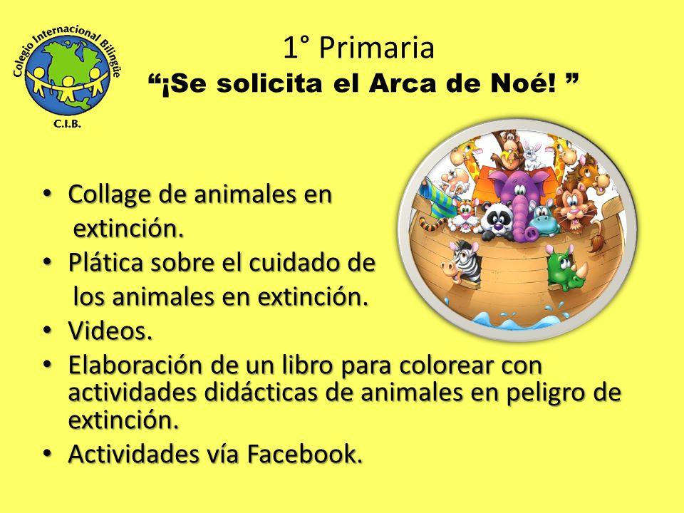 3ro Kinder Aguas con el Agua Experimento (agua dulce agua salada).