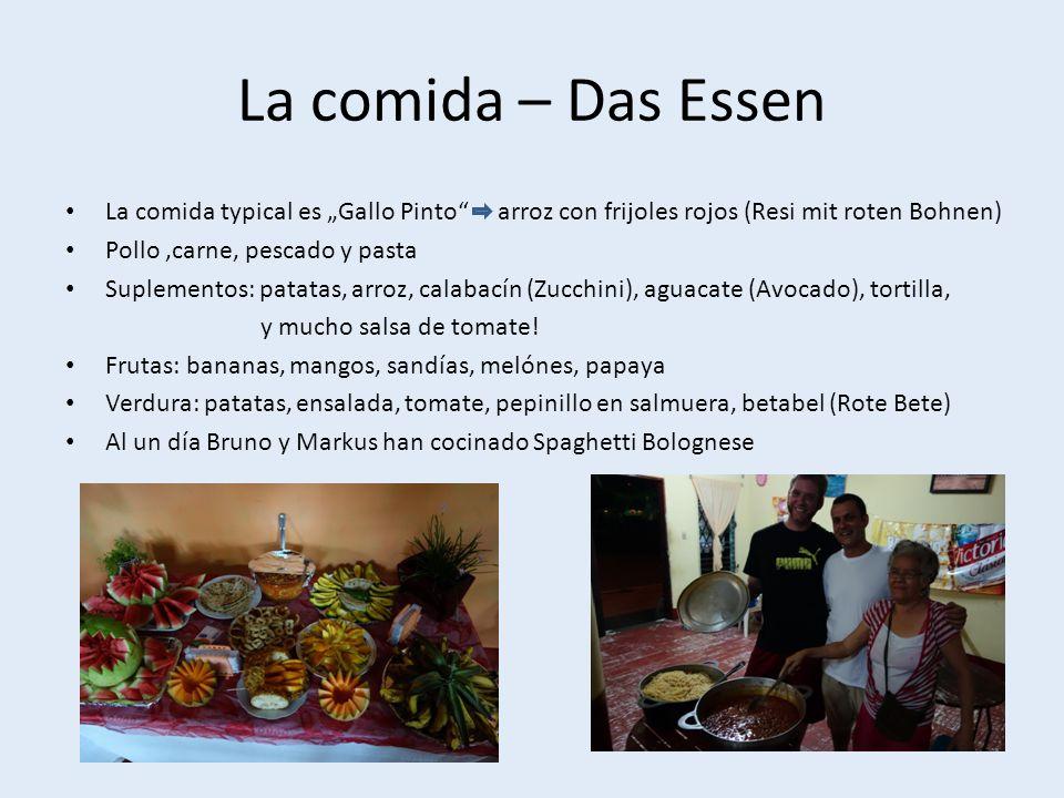 La comida – Das Essen La comida typical es Gallo Pinto arroz con frijoles rojos (Resi mit roten Bohnen) Pollo,carne, pescado y pasta Suplementos: patatas, arroz, calabacín (Zucchini), aguacate (Avocado), tortilla, y mucho salsa de tomate.