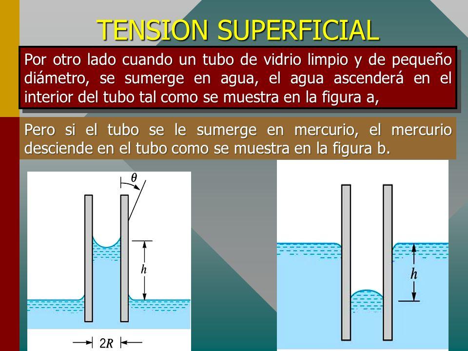TENSION SUPERFICIAL Si depositamos con cuidado sobre el agua una esfera de acero engrasada, ésta puede flotar, formando en la superficie del agua una