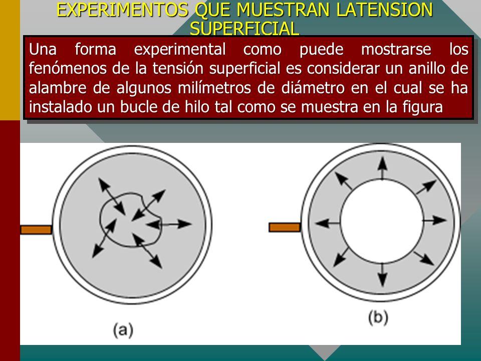 TENSION SUPERFICIAL La molécula en la superficie soporta la acción de una fuerza resultante dirigida hacia el interior del líquido, esta situación repetida a lo largo de toda la superficie del líquido produce la contracción de la superficie total del líquido como si se tratase de una membrana elástica.