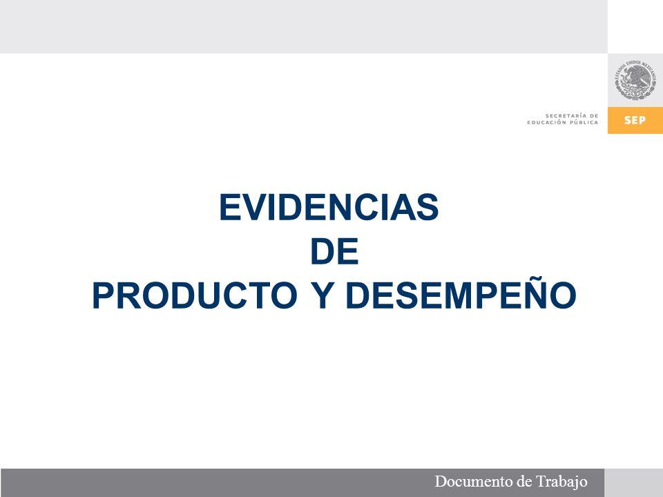 Documento de Trabajo EVIDENCIAS DE PRODUCTO Y DESEMPEÑO