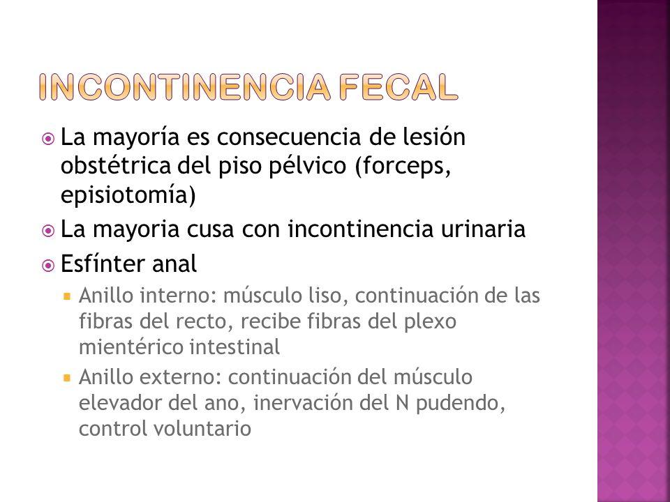 La mayoría es consecuencia de lesión obstétrica del piso pélvico (forceps, episiotomía) La mayoria cusa con incontinencia urinaria Esfínter anal Anillo interno: músculo liso, continuación de las fibras del recto, recibe fibras del plexo mientérico intestinal Anillo externo: continuación del músculo elevador del ano, inervación del N pudendo, control voluntario