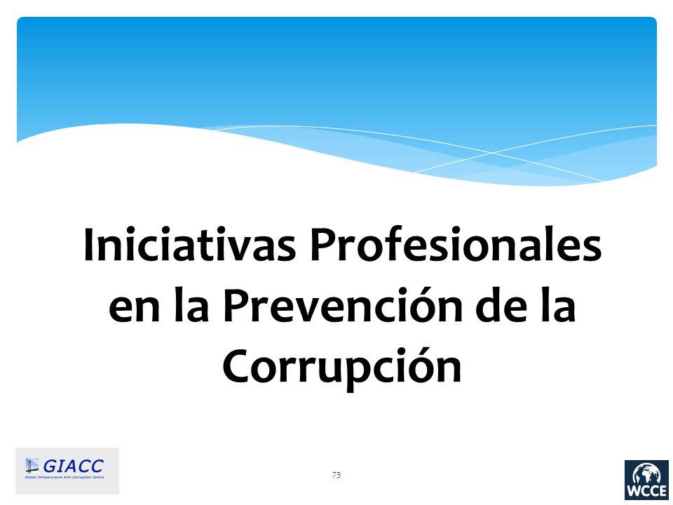 Iniciativas Profesionales en la Prevención de la Corrupción 73