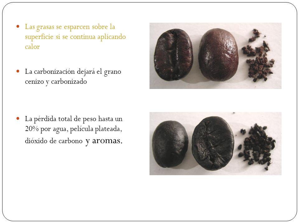 Las grasas se esparcen sobre la superficie si se continua aplicando calor La carbonización dejará el grano cenizo y carbonizado La pérdida total de pe