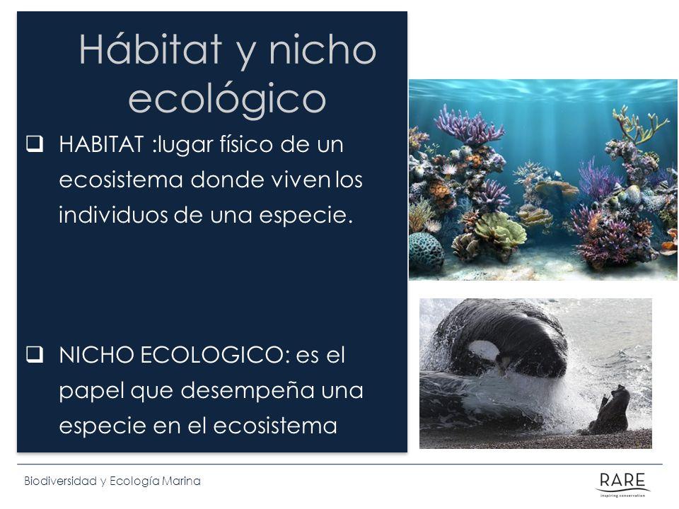 Biodiversidad y Ecología Marina Hábitat y nicho ecológico HABITAT :lugar físico de un ecosistema donde viven los individuos de una especie. NICHO ECOL