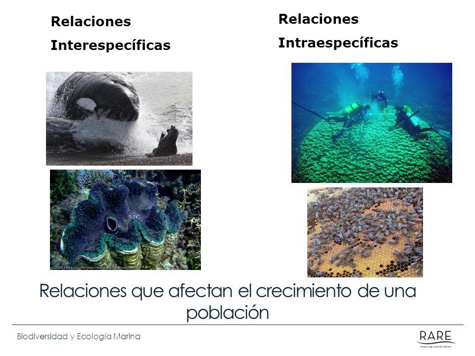 Biodiversidad y Ecología Marina Relaciones que afectan el crecimiento de una población Relaciones Interespecíficas Relaciones Intraespecíficas