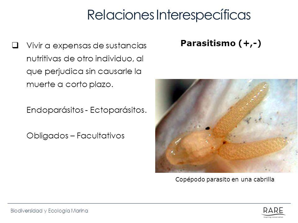 Biodiversidad y Ecología Marina Relaciones Interespecíficas Vivir a expensas de sustancias nutritivas de otro individuo, al que perjudica sin causarle