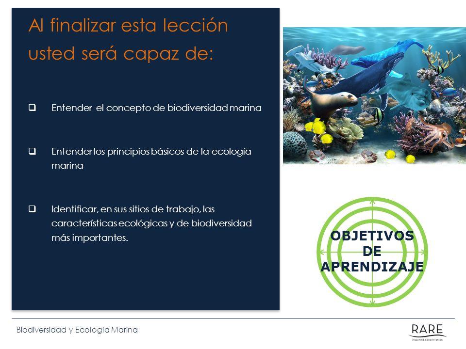 Al finalizar esta lección usted será capaz de: Entender el concepto de biodiversidad marina Entender los principios básicos de la ecología marina Iden