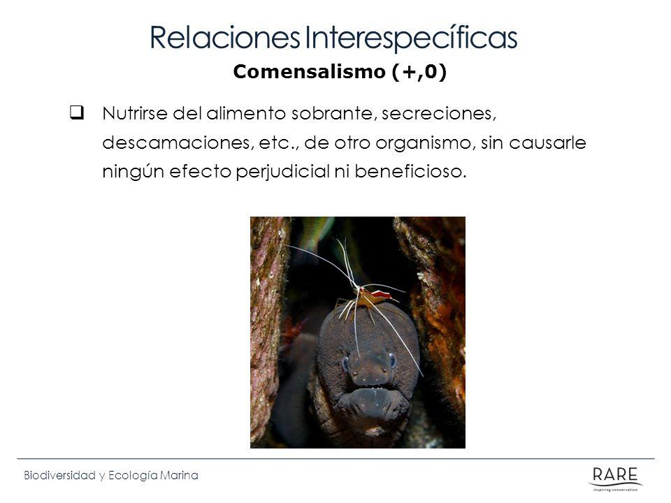 Biodiversidad y Ecología Marina Relaciones Interespecíficas Nutrirse del alimento sobrante, secreciones, descamaciones, etc., de otro organismo, sin c